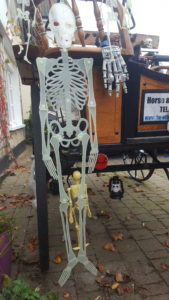 Skeleton Express