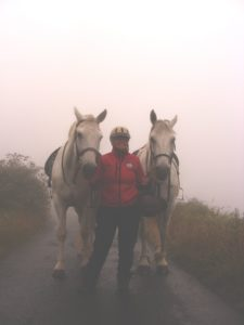 In the mists of Howth