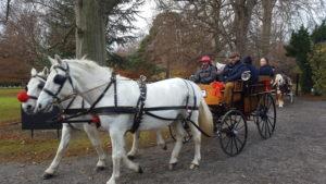 Farmleigh carriage rides 2016