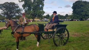 Overall winner - George Acres and his hackney pony put to a customised back to back